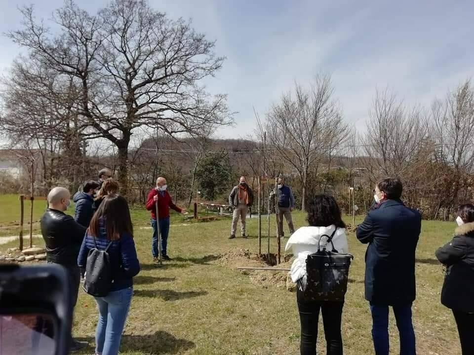 Giardino della Memoria albero per Paolo Adamo