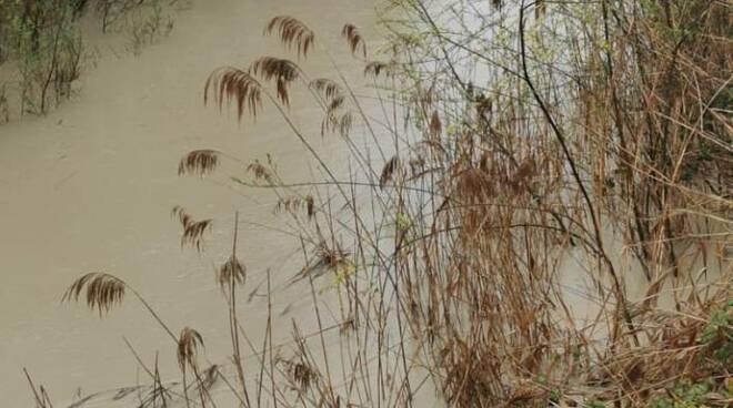 Sinarca in piena torrente argini pioggia