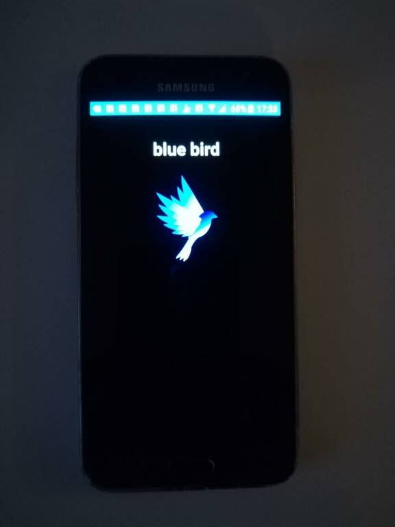 blue bird app scuola boccardi tiberio