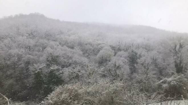 Meteo neve nebbia
