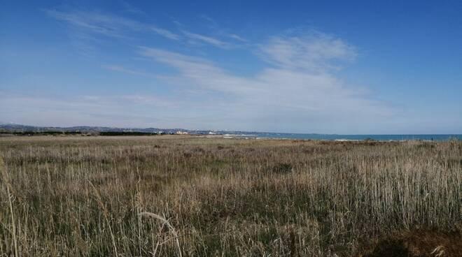 montenero marina foce trigno area south beach