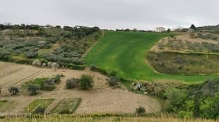 Natura campi Bassomolise verde agricoltura