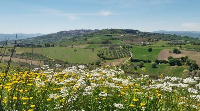 Paesaggio Molise bello turismo rurale campagna