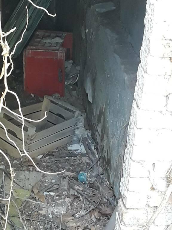 casa del degrado via Montello Campobasso foto verticale