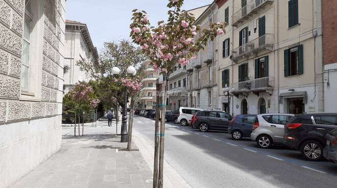 Via Roma Campobasso