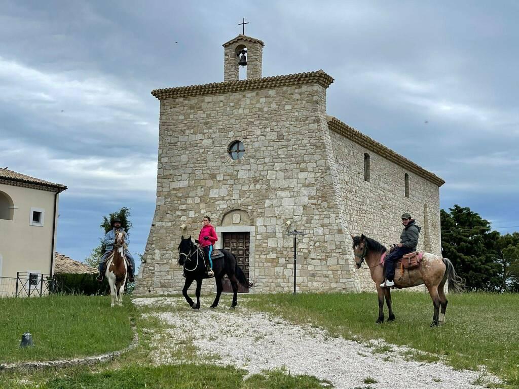 Cavalli Colletorto