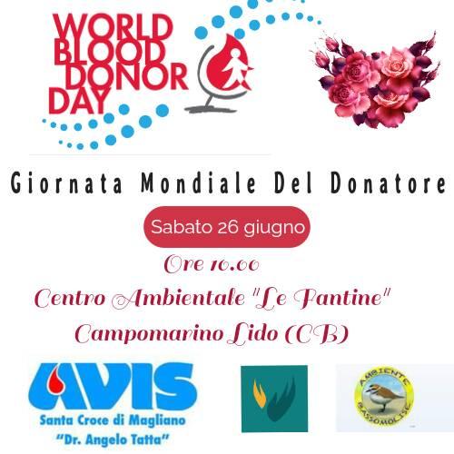 Giornata Mondiale Del Donatore: Avis - Il Valore - Ambiente Basso Molise insieme per celebrare il volontariato.