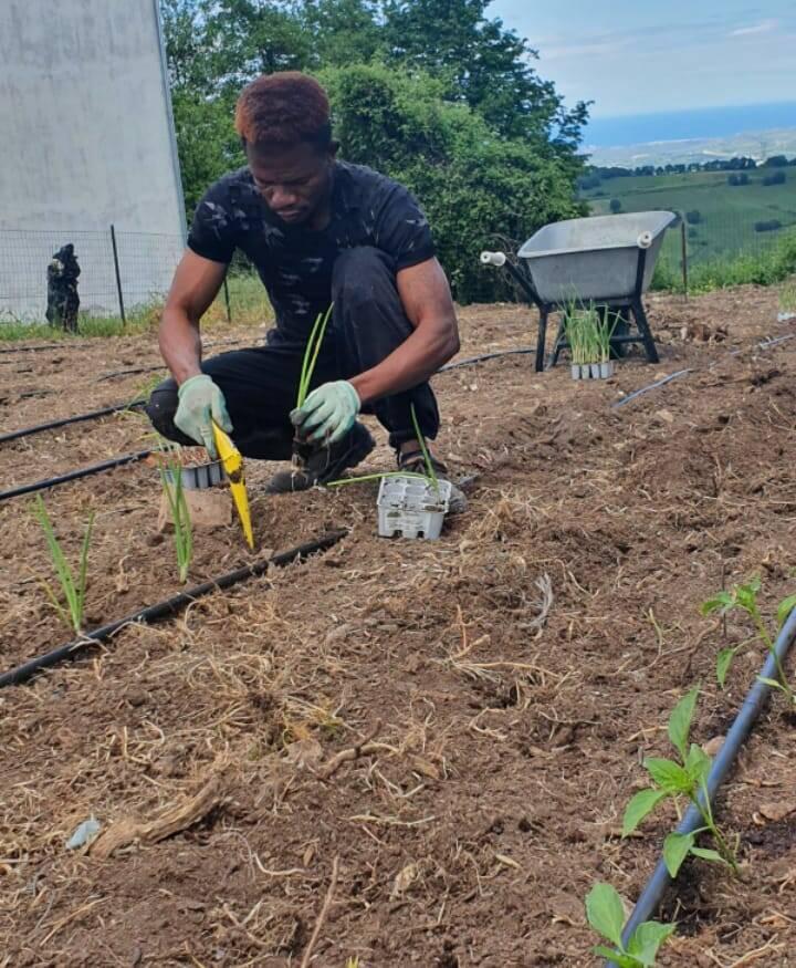 Progetto hope agricoltura orto coltivazioni