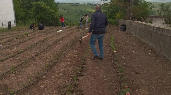 Progetto hope  Tavenna agricoltura orto coltivazioni