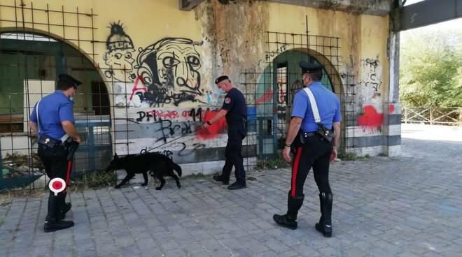 carabinieri cinofili isernia