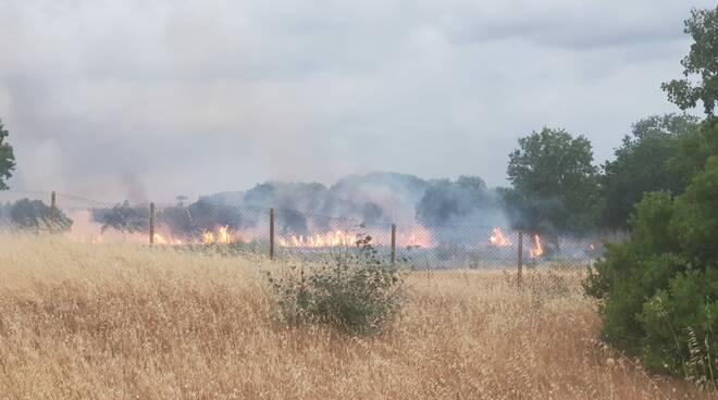 incendio bosco fantine