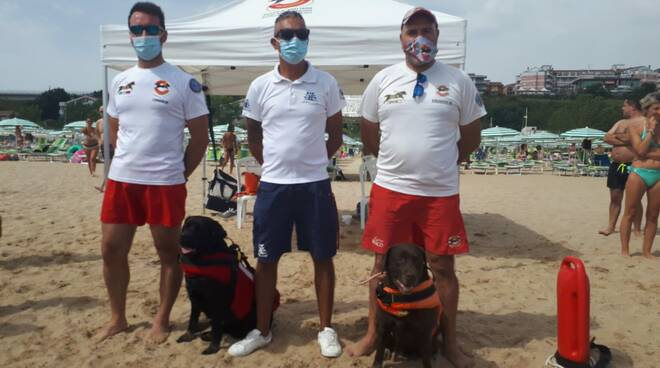 Cani bagnini Rio Vivo spiaggia