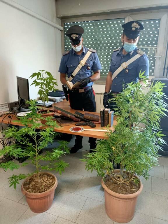 Carabinieri Casacalenda ladro marijuana