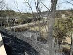 Campomarino, le immagini dopo l'incendio