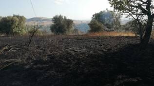 incendio fuoco cenere contrada guglionesi san giacomo