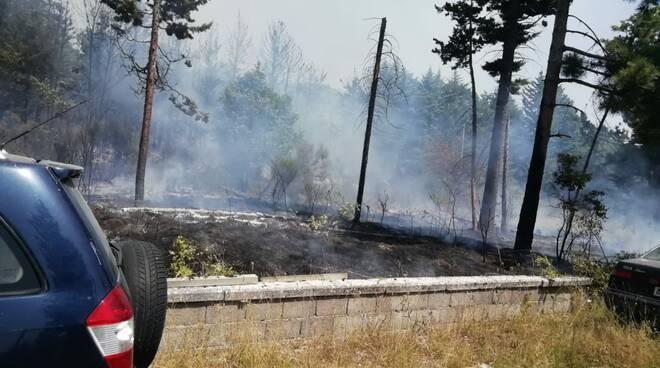 Pineta Vinchiaturo incendio