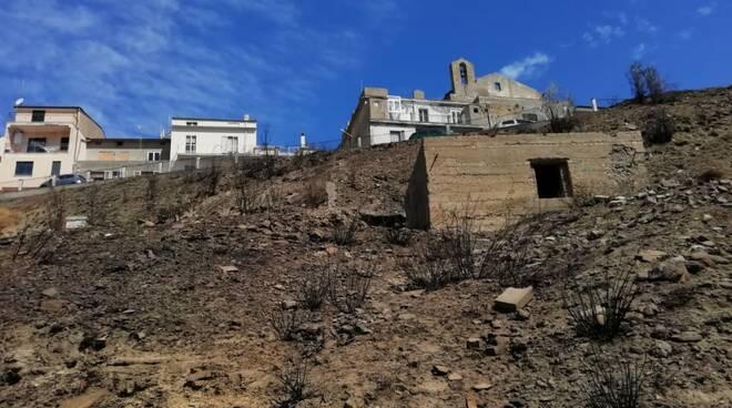 Guglionesi bruciata danni conta dei danni Oliveti Vigneti campagna paesaggio incendio