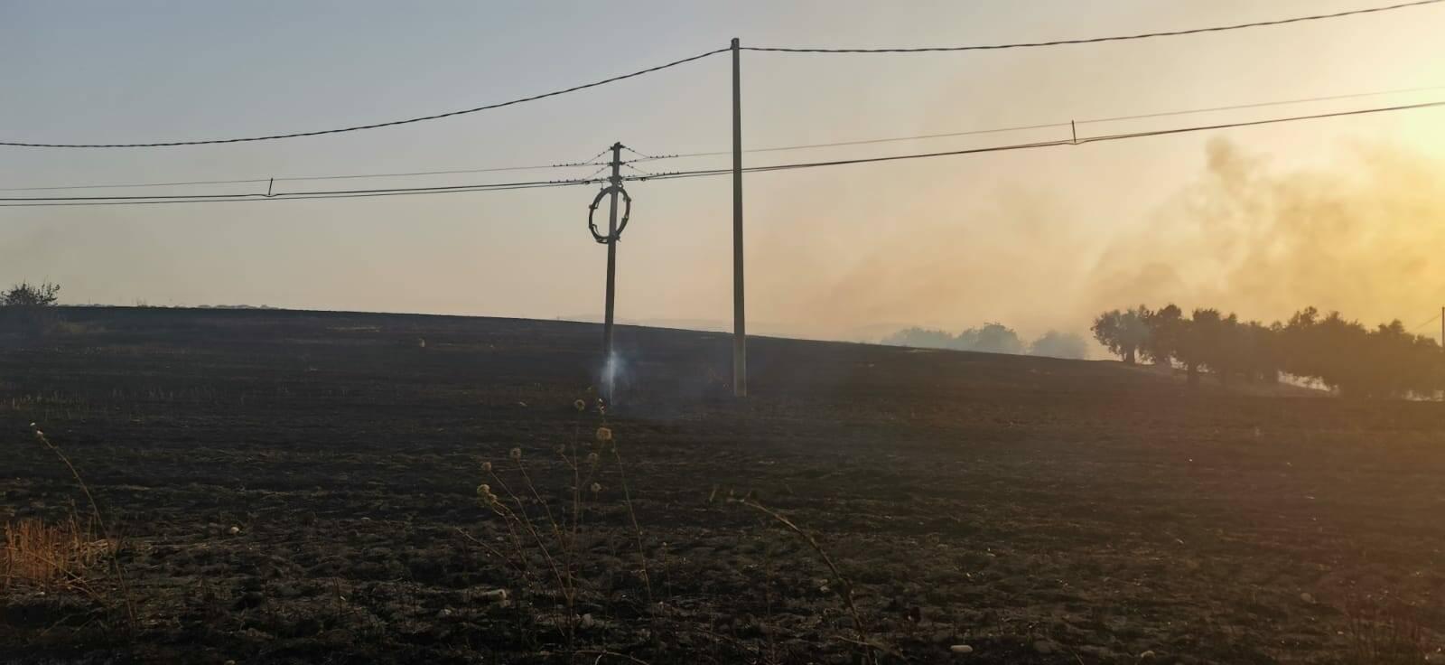 pali elettrici danneggiati guglionesi