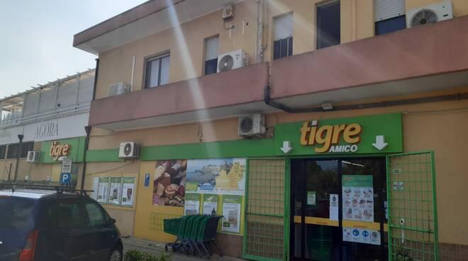 supermercato tigre difesa grande