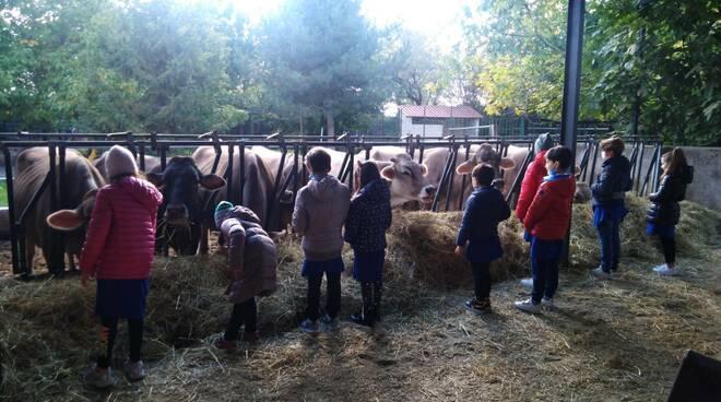 bambini stalla alunni Coldiretti