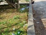 parchetto aldo moro rifiuti sporcizia